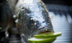Ganzer gegrillter Fisch